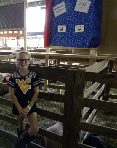 Mackenzie Dellinger, 10, of Edinburg, stands by her goats, Blackberry and Cinnamon, at the Shenandoah County Fair.  Kaley Toy/Daily